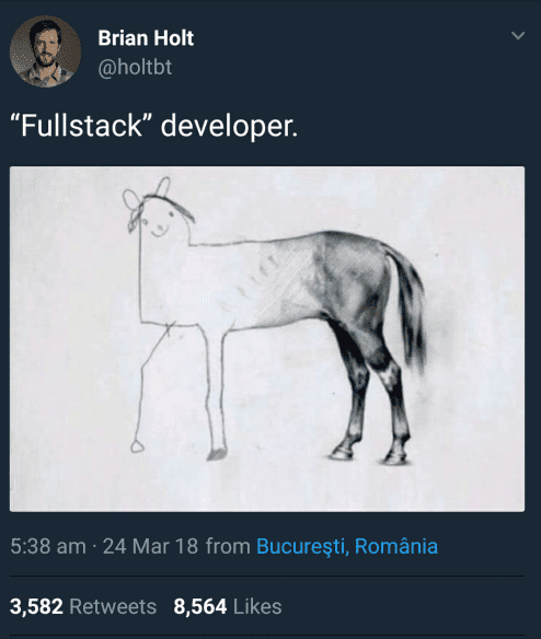 fullstack developers